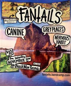 Fantails-nz-8.11.14